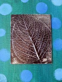 Leaf under aluminum foil for a relief print.