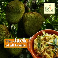 Jackfruit season is in full swing here in the western ghats. Jackfruit holds a very special place in the South Indian household. Our summers are tinted. Jackfruit Season, Jackfruit Seeds, All Fruits, Savory Snacks, Households, Fails, Sweet Treats, Deep, Indian