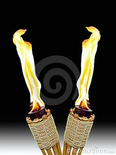 tiki torches- Couple of these in the backyard with the bitefighter oil.