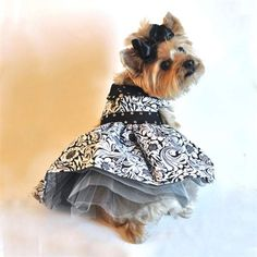 The Black and White Floral Dog Dress is a very girly dog harness dress with delicate studded accents and a tulle lining under the skirt for a fuller, more fashionable look.