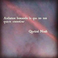 Quetzal Noah.