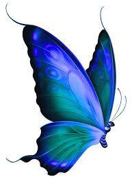 Resultado de imagen para butterflies blue