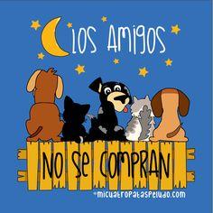 Los amigos no se compran #gatos #perros #mascotas