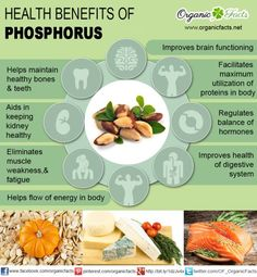The health benefits of phosphorous include healthy bone formation, improved digestion, excretion, protein formation, hormone balance, improved energy extraction, cell repair, chemical reactions, and nutrient utilization. The health benefits of phosphorous make it an important constituent of one's diet. Phosphorus is an important constituent of human bones and thus, one can't imagine making a move without the adequate amount of this mineral in the body. In fact, phosphorus is considered as…