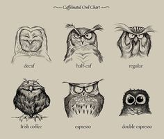 Caffeinated Owl Chart - this makes me laugh harder than it probably should... :)