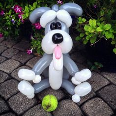 Schnauzer Dog balloon animal
