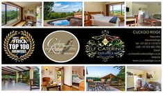 Its time to take a break at Cuckoo Ridge😎 Book your ideal self-catering stay with us online www.cuckooridge.co.za Or contact Lize on 072 430 1934, Email us on lize@cuckooridge.co.za #hazyview #cuckooridge #selfcatering #breakawayfortheweekend #familytime Take A Break, Catering, This Is Us, Book, Books, Book Illustrations, Libros, Libri