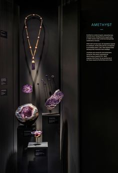 The Art & Science of Gems. Photo by Edward Hendricks. Courtesy ArtScience Museum at Marina Bay Sands. Museum Exhibition Design, Jewellery Exhibition, Exhibition Display, Design Museum, Jewellery Shop Design, Jewellery Display, Jewellery Photo, Jewelry Show, Jewelry Stores