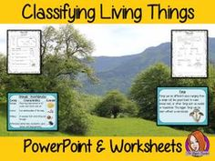 Classifying Living Things PowerPoint and Worksheets Science Worksheets, Science Resources, Science Lessons, Science Activities, Teacher Resources, Tes Resources, Elementary Science Classroom, Primary Science, Fun Learning