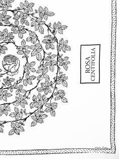 Maria Åström - ROSA CENTIFOLIA Inspire Me, Tapestry, Painting, Inspiration, Home Decor, Art, Hanging Tapestry, Biblical Inspiration, Art Background