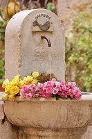Rosen liegen in Steinbrunnen im Garten
