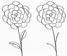 As you did in the first flower, draw a line down from the middle, the stem, and a few leaves like your first drawing. Description from drawing-pencil-sketches.com. I searched for this on bing.com/images