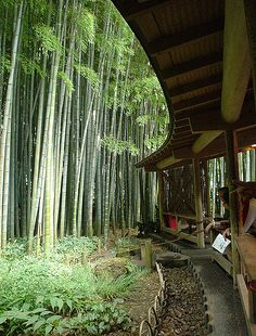 take dera kamakura