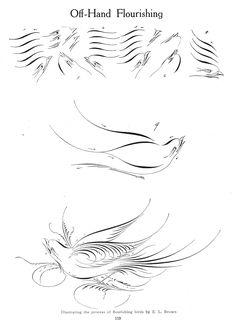 Calligraphic bird flourishing