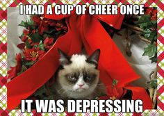 Grumpy cat frowns on your shenanigans. Grumpy cat is not impressed. I wonder if grumpy cat is an engineer. I did find some Grumpy Cat gifs: Grumpy Cat say \ Grumpy Cat Christmas, Christmas Humor, Christmas Themes, Merry Christmas, Christmas Pictures, Christmas Stuff, Christmas Decorations, Christmas Vacation, Christmas Quotes