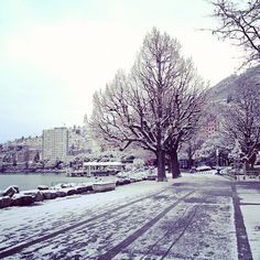 Montreux's lakeshore  #montreux #snow Fall Winter, Autumn, Snow, Outdoor, Outdoors, Fall, Outdoor Living, Garden, Eyes
