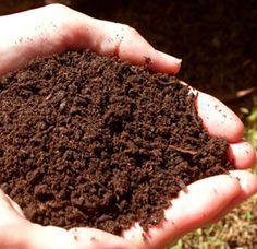 Pengertian, Fungsi, Manfaat, Jenis Dan Ciri-Ciri Tanah Beserta 3 Proses Pembentukannya Menurut Para Ahli Terlengkap