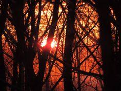 Snow vapor reflecting the orange sunset..