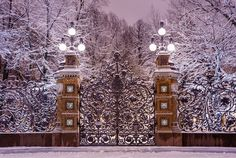 Winter in Mikhailovskiy garden, Saint-Petersburg,  Russia
