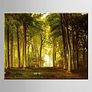 Oil+Painting+Pastoral+Scenery+Forest+Woodland+Hand+Painted+Canvas+with+Stretched+Framed+–+AUD+$+81.50