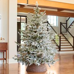 34 Lovely Simple Christmas Tree Decor For Interior Decorations - Decorating a Christmas tree is a family affair. Everyone can participate in the Christmas tree decoration. Your tree says a lot about you as a family . Merry Christmas, Blue Christmas, Simple Christmas, Christmas Ideas, Christmas Pictures, Christmas Inspiration, Christmas Nails, Holiday Fun, Christmas Things