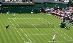 Tennis is played by millions of recreational players and is also a popular worldwide spectator sport.