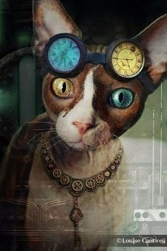 Steampunk Cats by Louise Cantwell