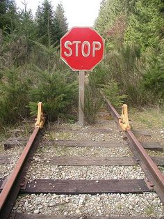 and get your Christmas tree ahead. Funny Street Signs, Funny Road Signs, Abandoned Train, Abandoned Places, Train Tracks, Image Hd, Make You Smile, Railroad Tracks, Signage