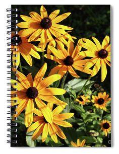 Black Eyed Susan Delight Spiral Notebook For Sale By Sandra Huston