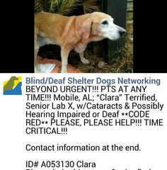Help please please very urgent?