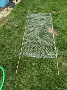 chicken wire trellis The Rusted Vegetable Garden blog
