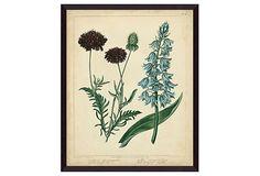 Cottage Florals VI on OneKingsLane.com  --  350.00 retail  --  21x17