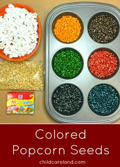 Colored Popcorn Seeds ... easy to make and can be used for many things.