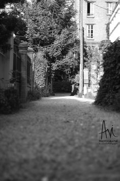 Avi photographe : ALLEE Photos, Outdoor, Outdoors, Pictures, Outdoor Games, The Great Outdoors