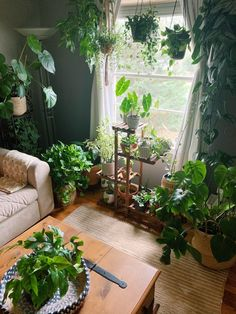 I love spending time with my babes in the morning : houseplants Room With Plants, House Plants Decor, Plant Decor, Indoor Garden, Indoor Plants, Jungle Bedroom, Jungle House, Plant Aesthetic, Decoration Plante