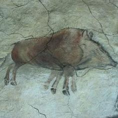 Boar cave painting from the Altamira cave, Spain