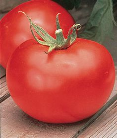 The best slicing tomato of them all!  My garden is not complete without a couple of these.