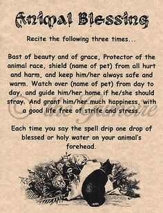 Animal Blessing, Book of Shadows Page, BOSes, Wicca Poster, Real Witchcraft | Collectibles, Religion & Spirituality, Wicca & PaganismBB| eBay!