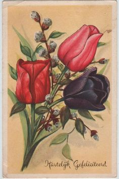 Old & vintage postcards of flowers for sale, artist drawn, real photographic by Valentine, Raphael Tuck, etc. Flora Vintage, Vintage Flowers, Vintage Prints, Postcards For Sale, Vintage Postcards, Vintage Greeting Cards, Vintage Ephemera, Flowers For Sale, Botanical Flowers