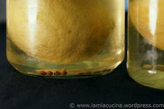 Marokkanischer Kichererbsensalat 4_2011 07 03_4771 by lamiacucina, via Flickr