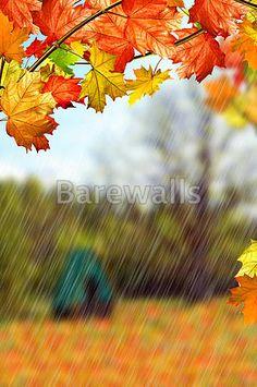 Barewalls has high-quality art prints, posters, and frames. Art Print of Autumn landscape. Search 33 Million Art Prints, Posters, and Canvas Wall Art Pieces at Barewalls. Poster Prints, Art Prints, Landscape Art, Canvas Wall Art, Art Pieces, Autumn, Painting, Art Impressions, Fall Season