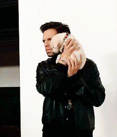 """Who the hell is Bucky?"" Imaginas y mini historias de Bucky Barne… # Romance # amreading # books # wattpad Sebastian Stan, Bucky Barnes, Ben Barnes, Chris Evans, Tom Hiddleston, Chris Hemsworth, Stan Lee, Buchanan, Scarlett Johansson"