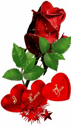 Today, if you hear His voice, do not harden your hearts as in the rebellion. Beautiful Love Pictures, I Love You Pictures, Love You Gif, Beautiful Gif, Beautiful Rose Flowers, Flowers Gif, Beautiful Flowers Wallpapers, Love Flowers, Love Wallpaper Backgrounds