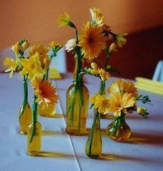 Gerber Daisies Yellow