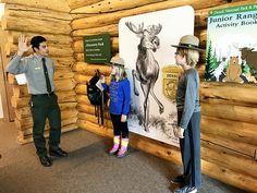 Denali National Park with Kids - The Beckham Project Alaska National Parks, Visit Alaska, Norwegian Cruise Line, Programming For Kids, Alaska Cruise, Adventure Tours, Disney Cruise Line, The Visitors, Royal Caribbean