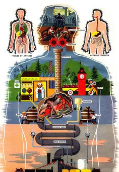 Industrial anatomy by x-ray delta one. Internal Affairs, Industrial, Information Graphics, Comic Covers, Science And Nature, Nature Pictures, Human Body, Surfing, Japan Illustration