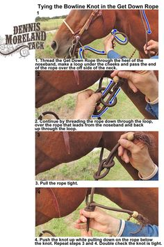 A Get Down could be the handiest piece of equipment you own! Get Downs are designed to be worn under your bridle so you can get off and lead or tie your horse while it's bridled. They are especially handy on the ranch or while you're trail riding or hunting. When you're in the saddle the Get Down rope can be carried by tucking it under your belt, double half-hitching it to your saddle horn or coiling it and attaching it to your saddle with the left front saddle string.