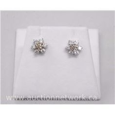 Pair of 18kt White gold diamond Cluster Earrings with 2 Round Brilliant Cut Diamond (1.02cts) and 12 - Auction Network