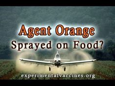 EPA Approves Agent Orange for GMO Crops - YouTube