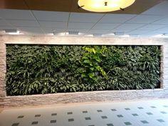 15 Living Green Walls | Plant Walls Ideas